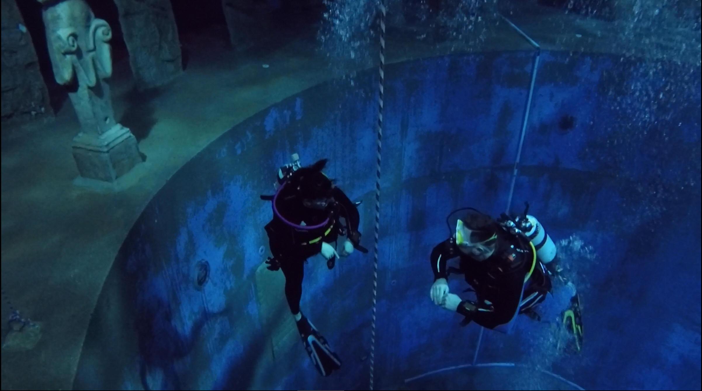 201801_CPS_Sortie Fosse Dive4Life_020