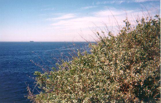 200105_CPS_Voyage Niolon_008