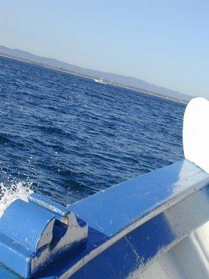 200208_CPS_Voyage Estartit_021