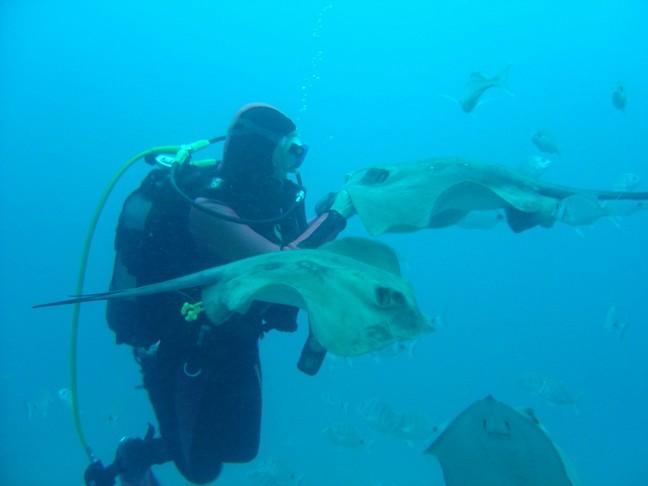 200401_CPS_Voyage Tenerife_050