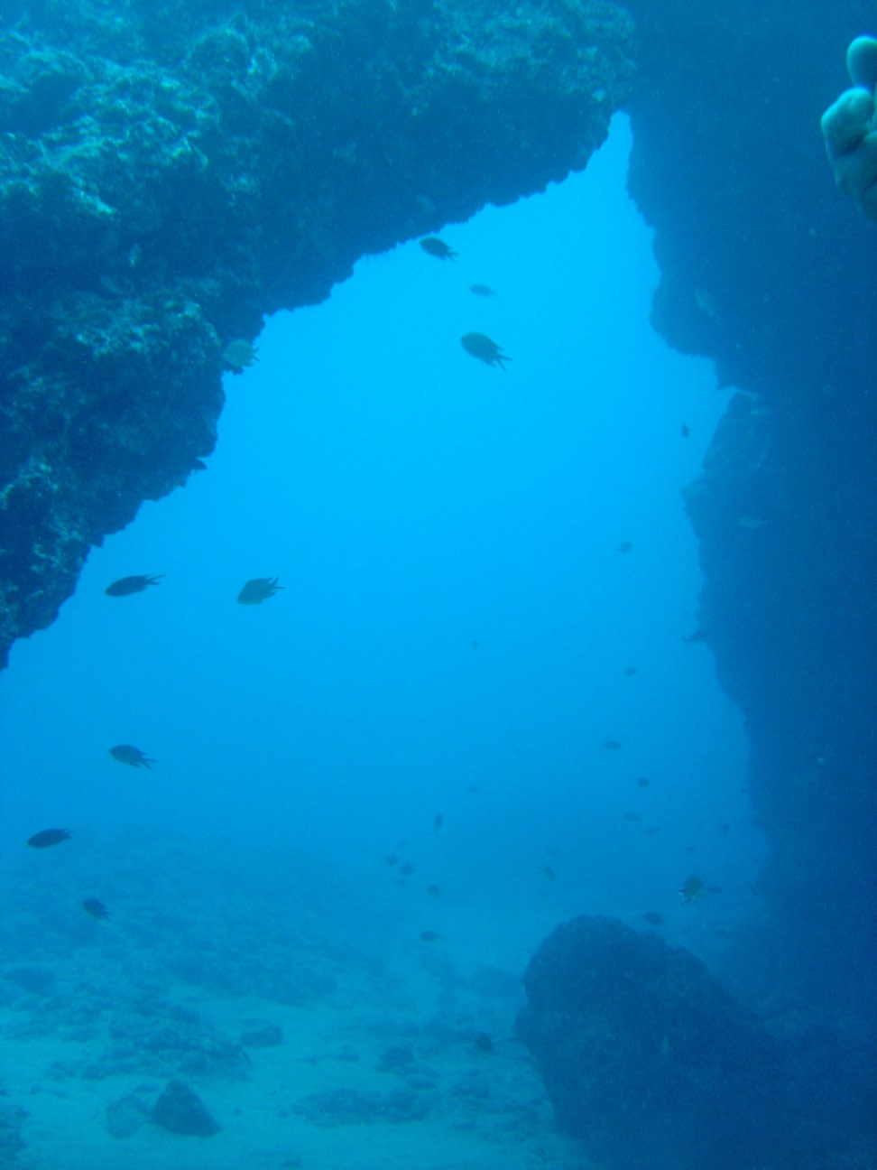 200401_CPS_Voyage Tenerife_087