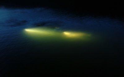2005_07_Sortie Plongée de Nuit Kruth