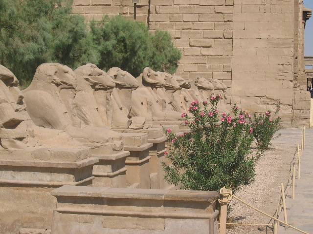 200507_CPS_Voyage Egypte_076