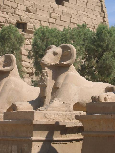 200507_CPS_Voyage Egypte_077