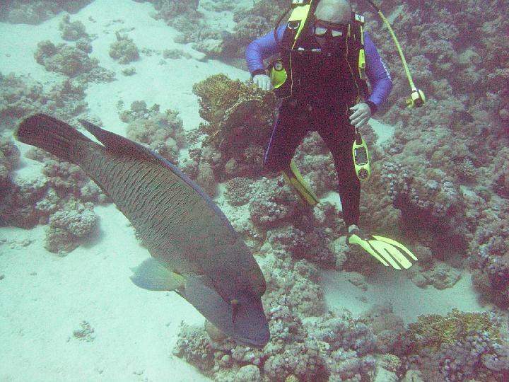 200612_CPS_Egypte Al Qusair_016