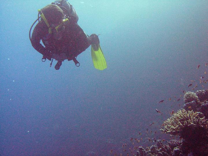 200612_CPS_Egypte Al Qusair_041