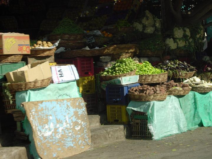 200612_CPS_Egypte Al Qusair_074