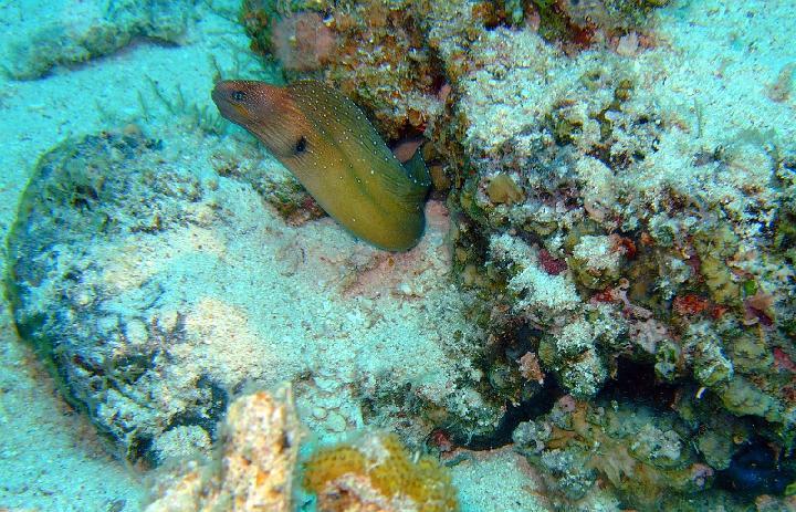 200706_CPS_Voyage Egypte El Gouna_006