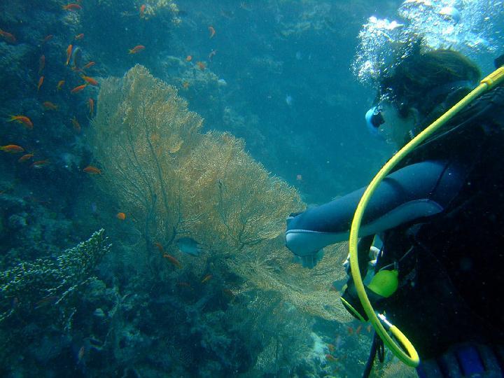 200706_CPS_Voyage Egypte El Gouna_016