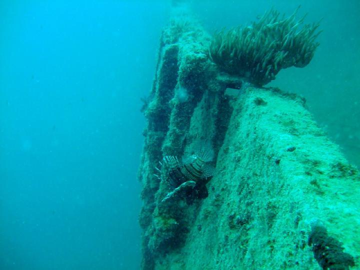 200706_CPS_Voyage Egypte El Gouna_033