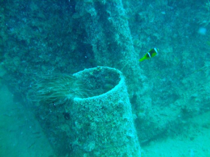 200706_CPS_Voyage Egypte El Gouna_034