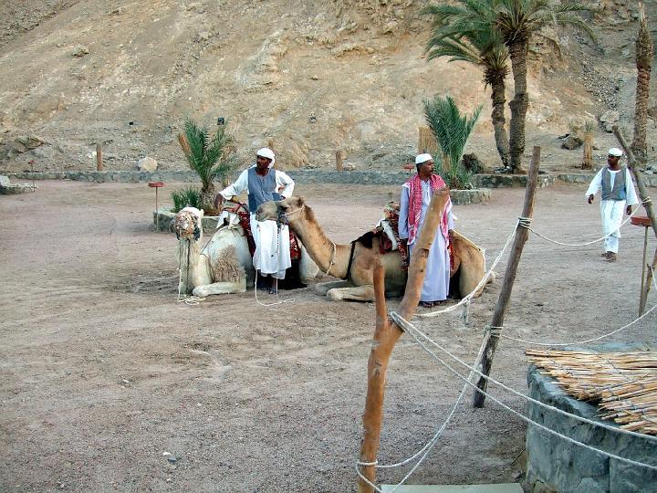200706_CPS_Voyage Egypte El Gouna_049