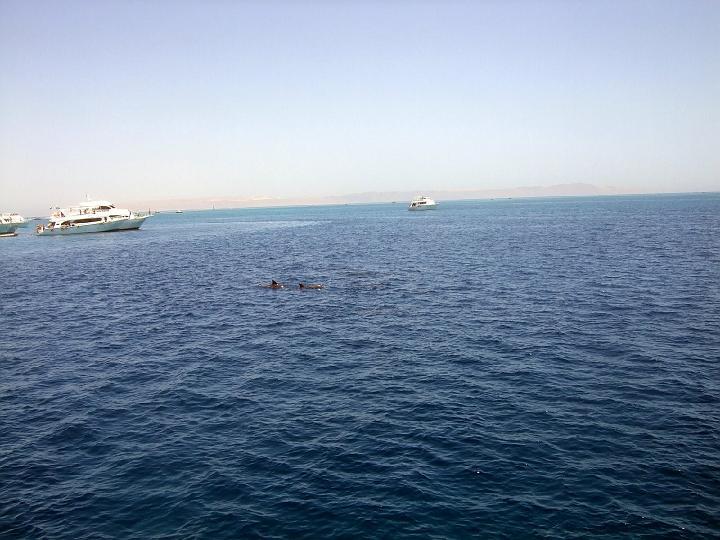 200706_CPS_Voyage Egypte El Gouna_069