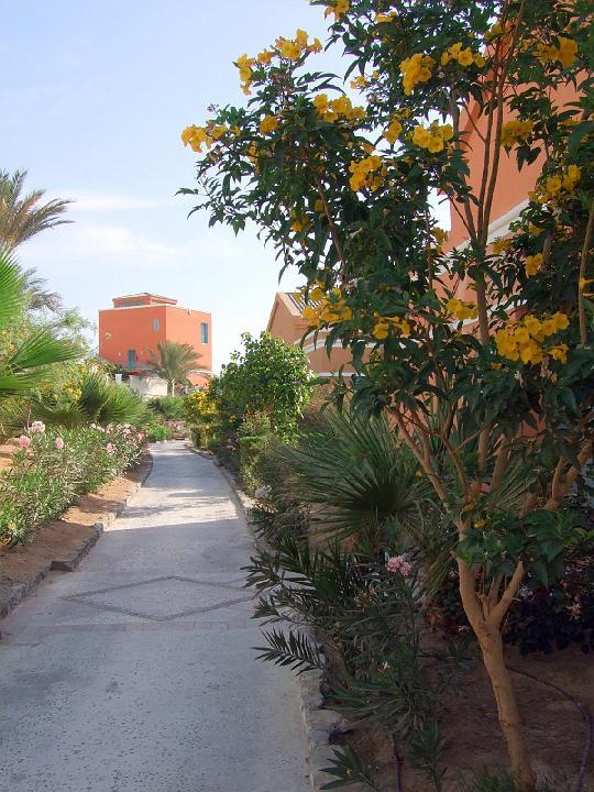200706_CPS_Voyage Egypte El Gouna_080