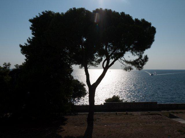 201308_CPS_Voyage Croatie_042