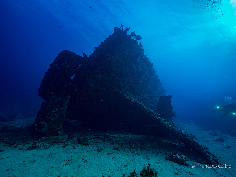 CPS_Divers_Fond_Carnatic 800_600