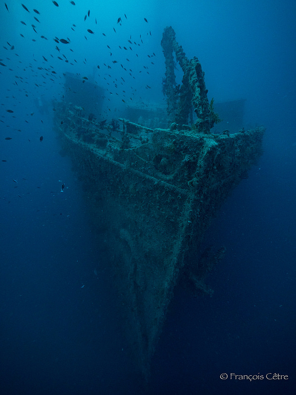 CPS_Divers_Fond_Rosalie Moller 800_600