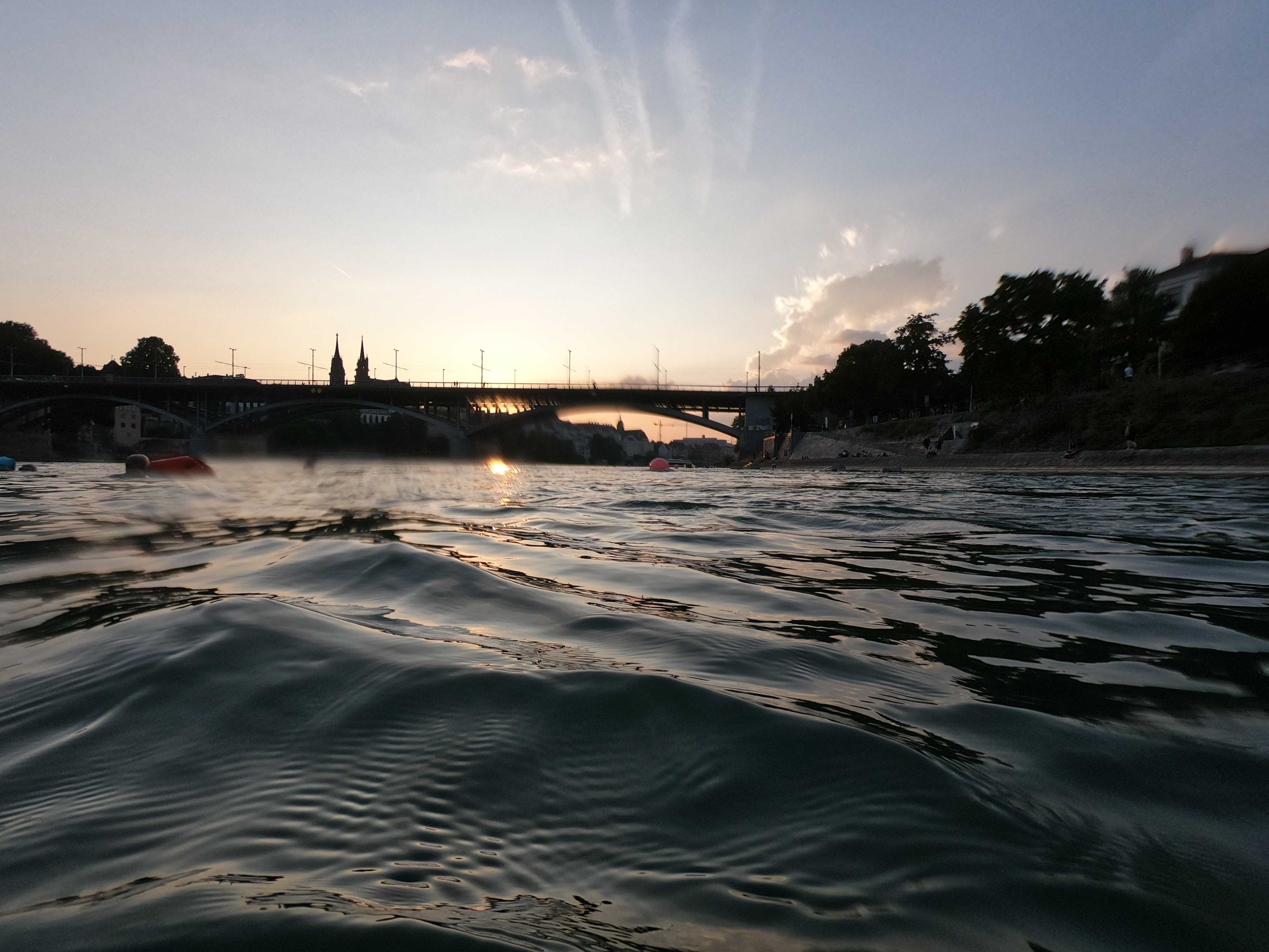 201908_CPS_Sortie RheinSchwimmen_008